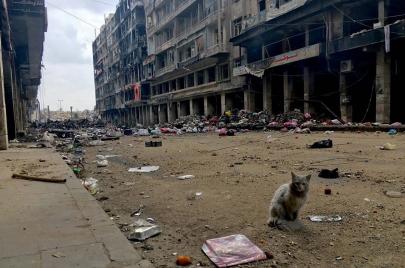 يوميات الثورة في حلب