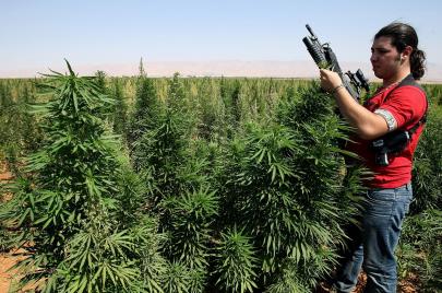 لبنان.. الدولة ومخدرات أبو سلة