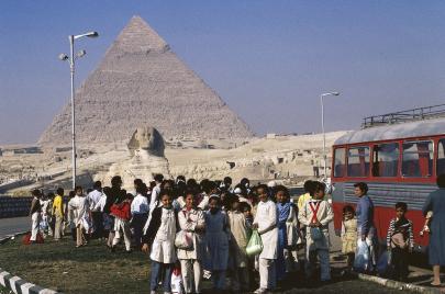 عن مجانية التعليم في مصر وعوالم موازية
